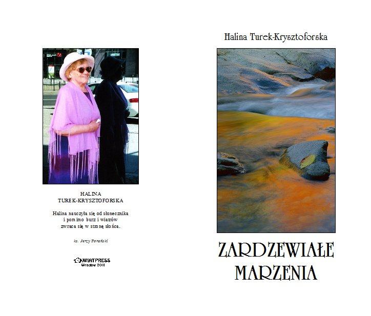 2011-zardzewiale-marzenia-okladka